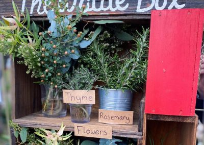 The Wattle Box